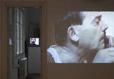 """EXHIBITION VIEW, ALBAN MUJA, """"GERMANS ARE A LITTLE BIT SCARED OF ME"""", 2013 ȘI BROCK ENRIGHT, """"WELLWATER"""", 2002, CREDITE FOTO: BENJAMIN LEE RITCHIE HANDLER"""